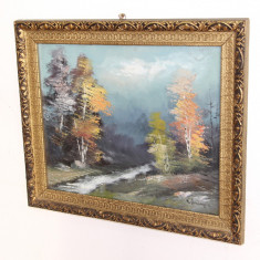 Tablou ulei pe carton Semnat Nicolae Ambrozie; Rama din lemn 59X49 cm;