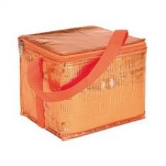 Geanta frigorifica Gala Orange