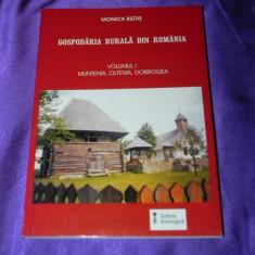 Gospodaria rurala in Romania vol 1 Muntenia Oltenia Dobrogea Monica Budis (f3145 - Carte Arta populara
