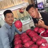 Seminte de Pitaya Gigant - fruct delicios - 3 seminte pt semanat