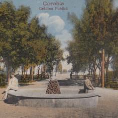 CORABIA, GRADINA PUBLICA - Carte Postala Oltenia 1904-1918, Necirculata, Printata