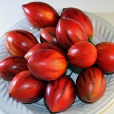 Seminte rare de Rosii de Panama - 2 seminte pentru semanat - Seminte rosii
