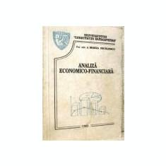 Maria Niculescu - Analiza economico-financiara