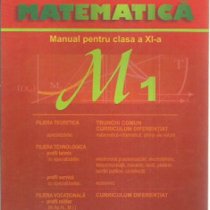 Marius Burtea - MATEMATICA MANUAL PENTRU CLASA A XI-A M1 - Manual scolar Altele, Clasa 11