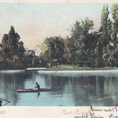 BUCURESTI, LACUL CISMIGIU, CLASICA, CIRCULATA 1904 - Carte Postala Muntenia pana la 1904, Printata
