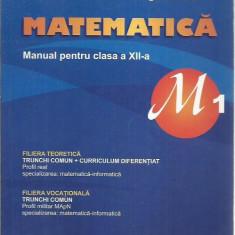 Marius Burtea - MATEMATICA MANUAL PENTRU CLASA A XII-A M1 - Manual scolar Altele, Clasa 12