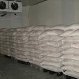 Vand 30 tone Seminte Dovleac - Seminte de dovleac