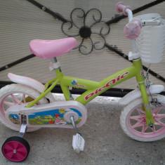 PicNic by Denver, bicicleta copii 12