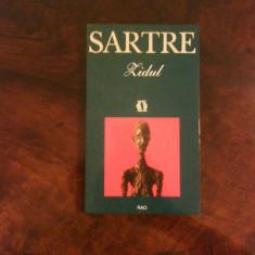 Jean- Paul Sartre Zidul - Roman, Rao