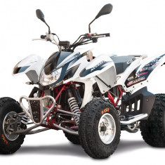 Access Warrior 450 Limited White '16 - Quad