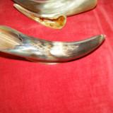 Bibelou  in forma de corn