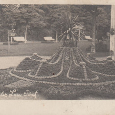 LACUL SARAT, LACU-SARAT PARCUL ENGLEZ, CIRCULATA 1915 BRAILA - Carte Postala Muntenia 1904-1918, Printata