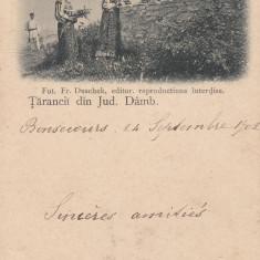 TARANCI DIN JUD. DAMBOVITA, IN COSTUME POPULARE, FOTO FR. DUSCHEK, CLASICA - Carte postala tematica, Necirculata, Printata