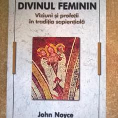 John Noyce - Divinul feminin - Carte ezoterism