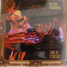 Gypsy Verve - Muzica Latino Altele, CD