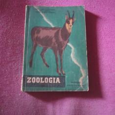 Carte zoologia clasa 9 anul 1958 - Carte Zoologie