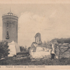 TARGOVISTE PALATUL DOMNESC SI TURNUL CHINDIEI ED. LIBRARIEI S. J. NICOLAESCU - Carte Postala Muntenia dupa 1918, Necirculata, Printata