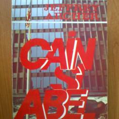 Z1 Cain Si Abel - Jeffrey Archer - Roman