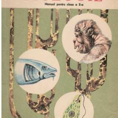 Biologie animala - Manual pentru clasa a X-a - Autor(i): Gh. Nastasescu,