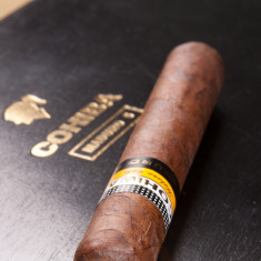 Cohiba Maduro 5 Genios - Trabuc