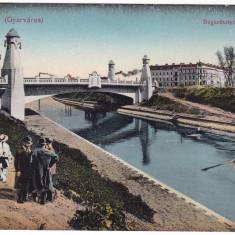 #2022- Romania, Temesvar, Timisoara, c.p. necirc. 1918: Bega, podul nou, anim - Carte Postala Banat 1904-1918, Necirculata, Fotografie