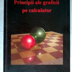 D. Petcu, L. Cucu - Principii ale graficii pe calculator