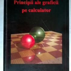 D. Petcu, L. Cucu - Principii ale graficii pe calculator