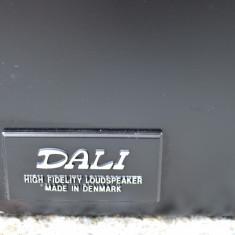 Boxe Dali 4B BEECH, Boxe compacte, 121-160W