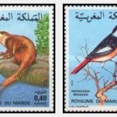 Maroc 1979 - Fauna, serie neuzata