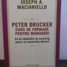 Peter Drucker. Curs de formare pentru manageri- Jospeh A. Marciarello - Carte Marketing