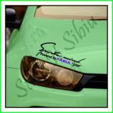 Sticker Far-Sports Mind-Skoda Fabia_Tuning Auto_Cod: FAR-035_Dim: 25 cm. x 9.