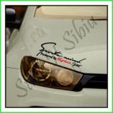 Sticker Far-Sports Mind-Renault Symbol_Tuning Auto_Cod: FAR-031_Dim: 25 cm.