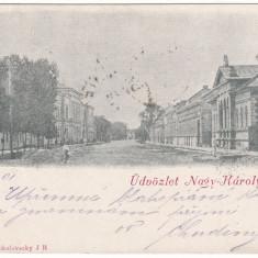 #2058- Romania, Nagykaroly, Carei, c.p. circulata 1901: Scena strada, animat - Carte Postala Crisana pana la 1904, Fotografie