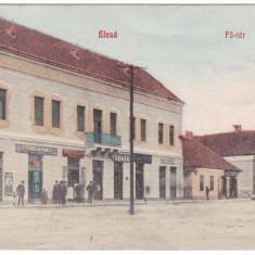 #2063- Romania, Elesd, Alesd  c.p. circulata 1909: Centrul, animat