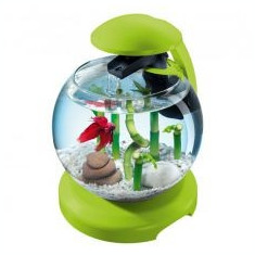 Acvariu pentru pești betta, verde - sferic 6, 8 L - Acvariu si terariu Tetra