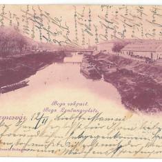 1261 - L i t h o, TIMISOARA - old postcard - used - 1900