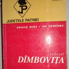 Judetul Dambovita colectia judetele patriei cu harta - Carte Geografie