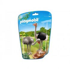 Strut cu Pui - Figurina Animale Playmobil