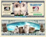!!! SUA = FANTASY NOTE (TJ6) =   PISICA  PERSANA   - 2011 - UNC