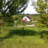 Vand 5000 m teren Tomesti / Podul Vatafului , str. RELEU langa PADURE., Teren intravilan
