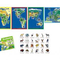 Lotto Cu Animale Miniland