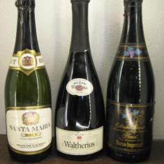 3 sticle rare șampanie ITALY