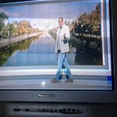 Televizoare Sony, Panasonic, Eurocolor si Regal - Televizor CRT