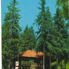 CPI (B8543) CARTE POSTALA - CABANA HOMOROD - Carte Postala Moldova dupa 1918, Circulata, Fotografie