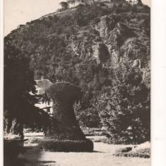CPI (B8594) CARTE POSTALA - DEVA. VEDERE SPRE CETATE, RPR - Carte Postala Transilvania dupa 1918, Necirculata, Fotografie