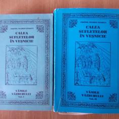 CALEA SUFLETELOR IN VESNICIE- NICODIM MANDITA, VOLUMUL I SI II - Carti ortodoxe