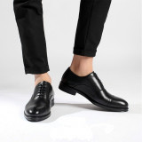 Pantofi Derby Luxury COD: PDL-1. Disponibili in 2 culori. NEW COLLECTION!