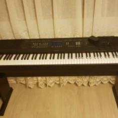 Pian digital profesional Yamaha DGX650B clapa dinamica sunet real