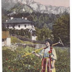 #2098- Romania, c.p. necirc. aprox. 1910: Folklor, port national roman Muntenia?
