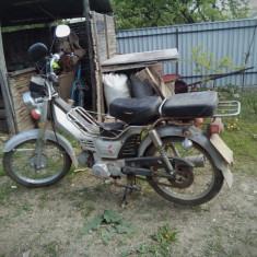 Motocicleta Leopard